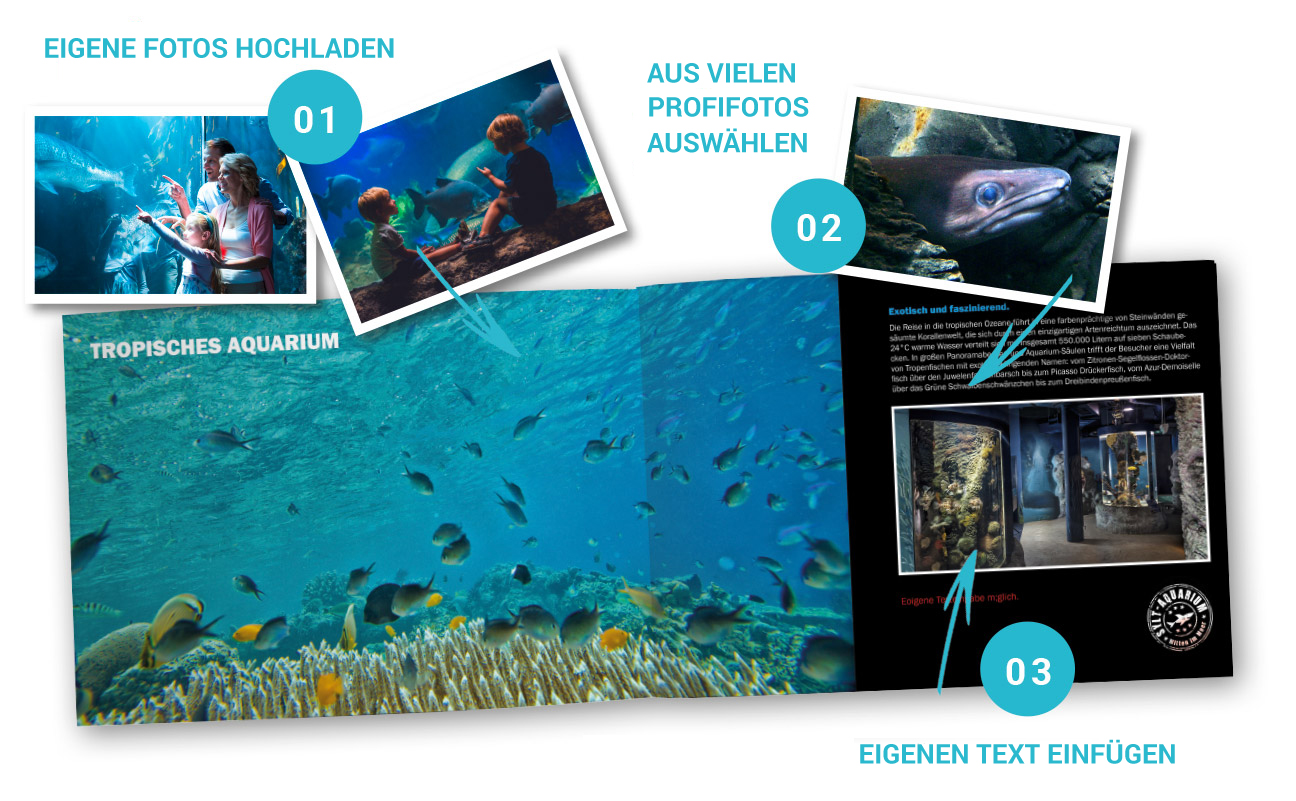 How to Aquarium Sylt