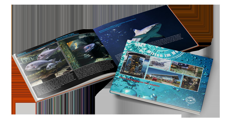 Erlebnisbuch Aquarium Sylt
