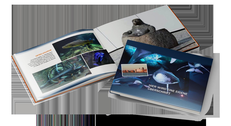 Erlebnisbuch Ozeaneum Stralsund